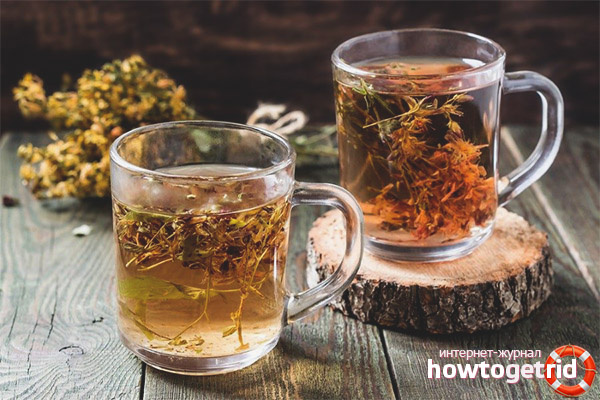 Рецепты заваривания чая из зверобоя