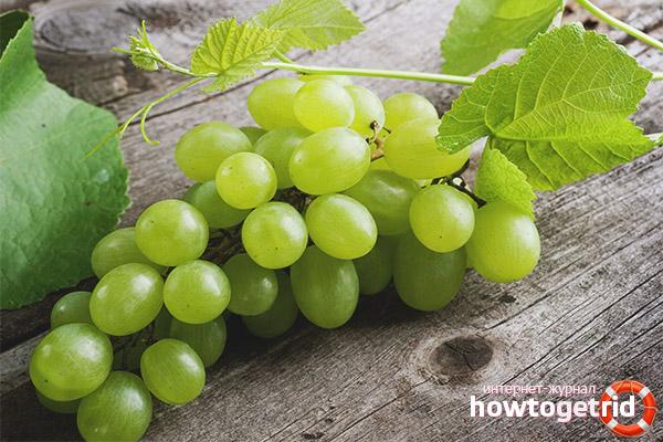 Виноград во время беременности