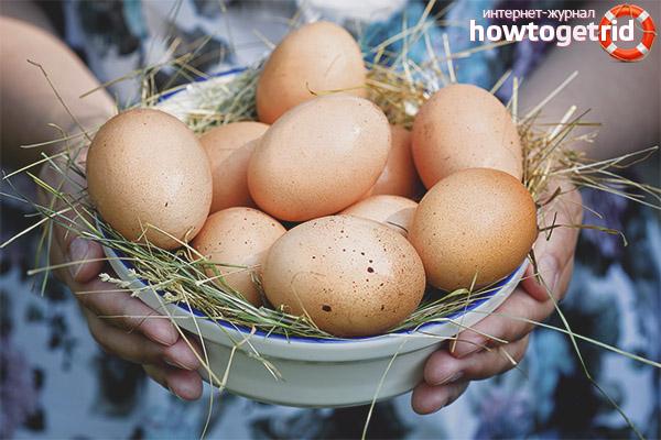 Можно ли беременным есть яйца