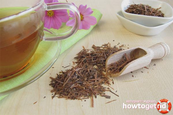 Полезные свойства и противопоказания чая лапачо