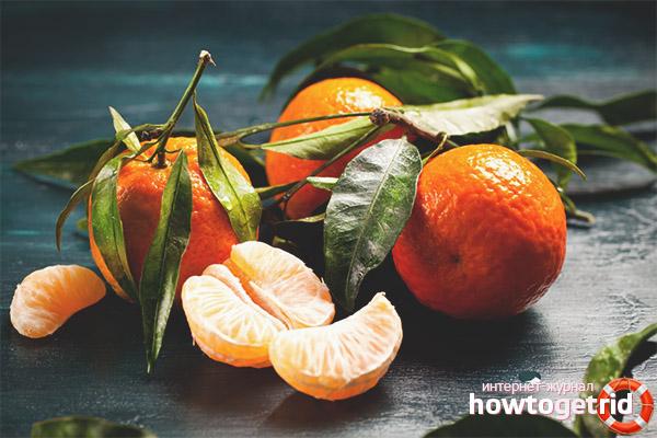 Противопоказания мандарин при беременности