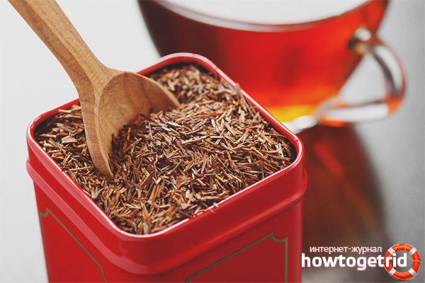 Противопоказания и вредное воздействие чая ройбуш