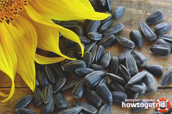 Разрешены ли семена при похудении