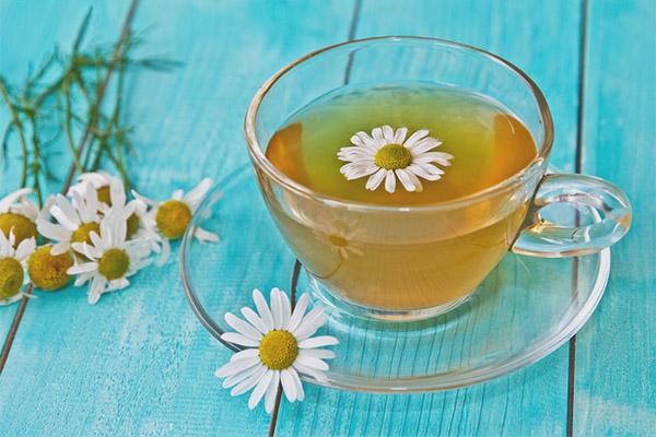 Как правильно заварить ромашковый чай