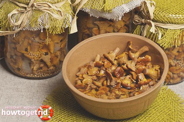 Рецепт маринованных лисичек