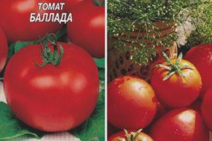 Томат Баллада