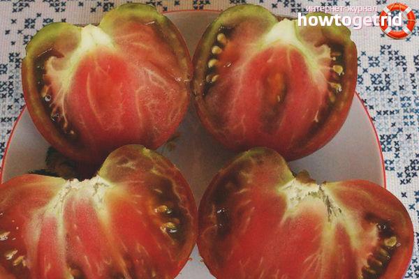 Описание томатов Сиреневое озеро