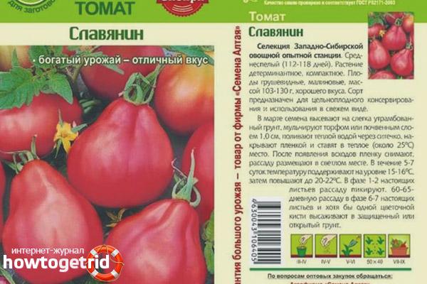 Выращивание томатов Славянин