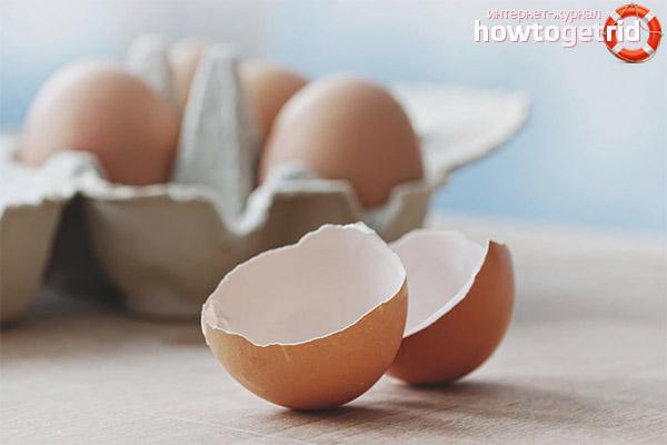 Дневная норма яичной скорлупы