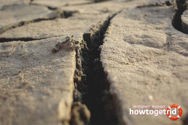 Как вести себя во время землетрясения