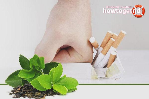 Эвкалипт от курения