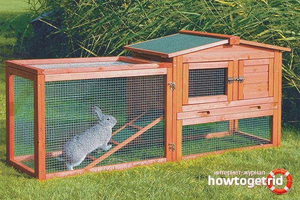 Загон для кроликов