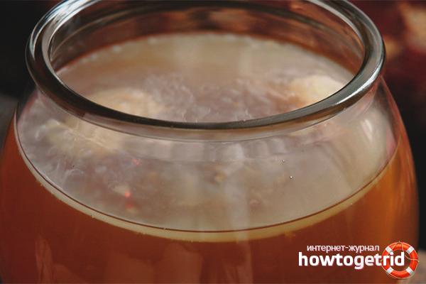 Чайный гриб из яблочного уксуса