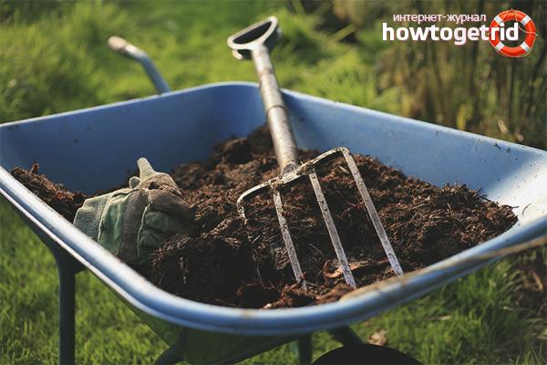 Использование компостного удобрения
