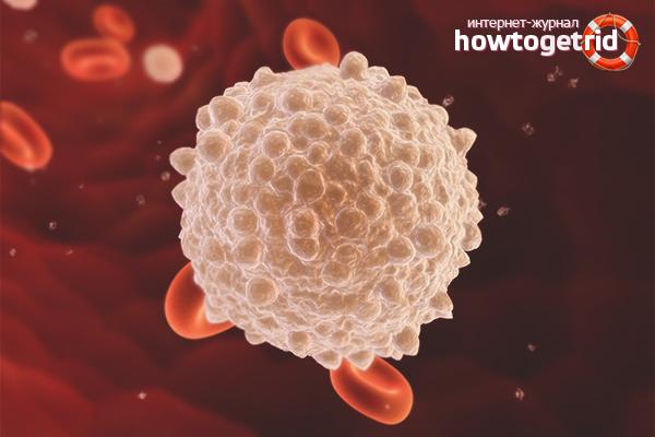 Как поднять лейкоциты в крови после химиотерапии