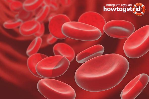 Как повысить гемоглобин у ребенка