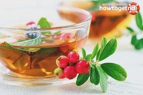 Чай от отеков из брусники