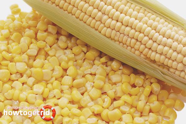 Хранение отварной кукурузы