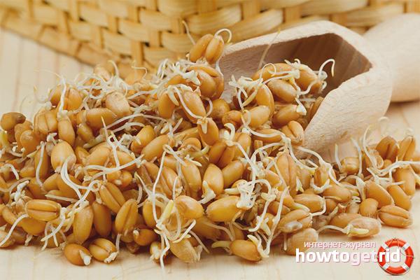 Употребление пророщенной пшеницы