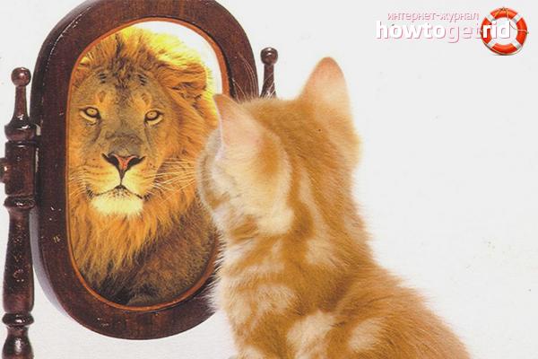 Как мужчине повысить самооценку