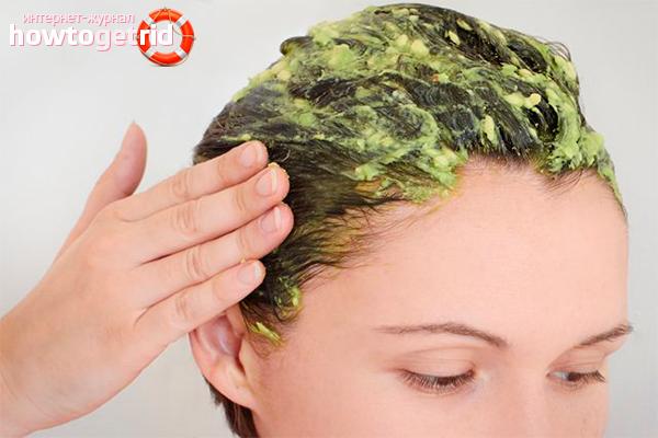 Домашняя маска из авокадо для волос