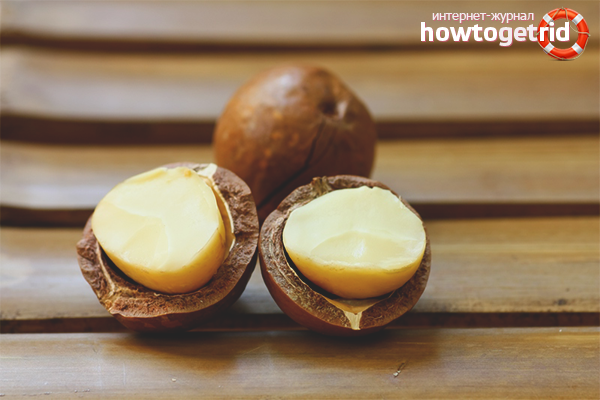 Польза макадамских орехов в косметологии