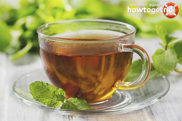 Вред чая с мелиссой для организма