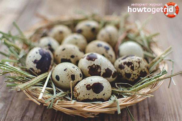 Вред перепелиного яйца