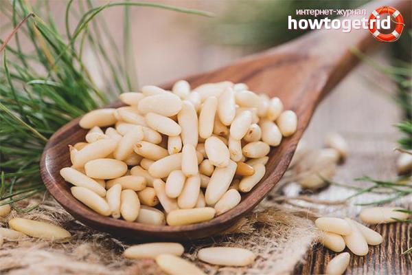 Польза кедровых орехов для женщин