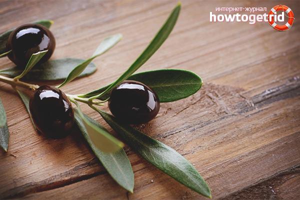 Польза маслин с косточками