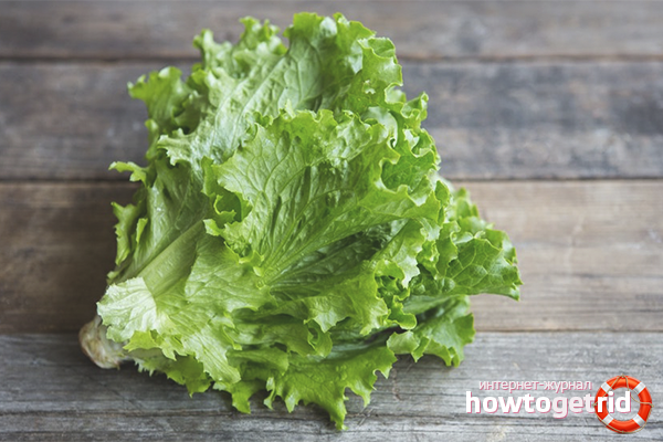 Польза салата при похудении