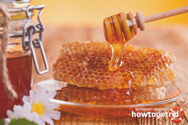 Можно ли есть медовые соты