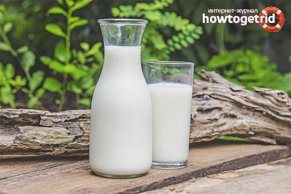 Вред молока для мужчин