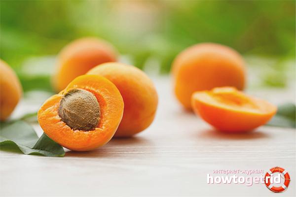 Применение абрикоса в медицине