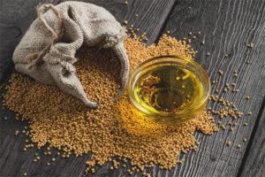 Полезные свойства и противопоказания горчичного масла