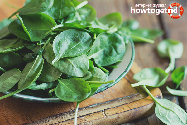 Полезные свойства и противопоказания шпината