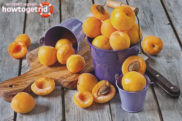 Что лечит абрикос