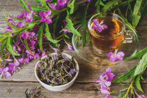 Полезные свойства и противопоказания иван-чая