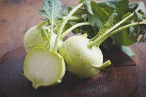 Полезные свойства и противопоказания капусты кольраби