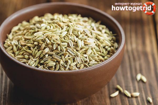 Полезные свойства и противопоказания семян укропа