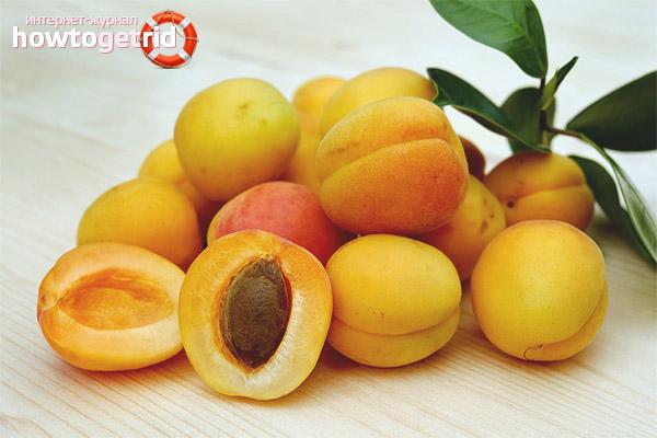 Противопоказания абрикоса для беременных