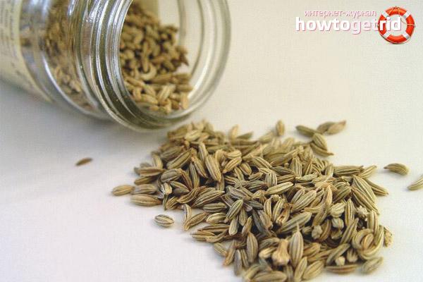 Противопоказания семян укропа