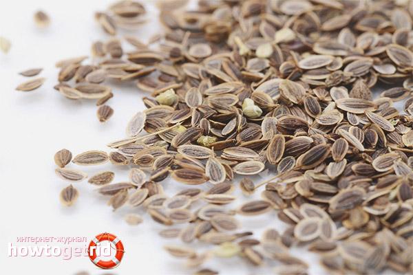 Семена укропа в борьбе с коликами у малышей