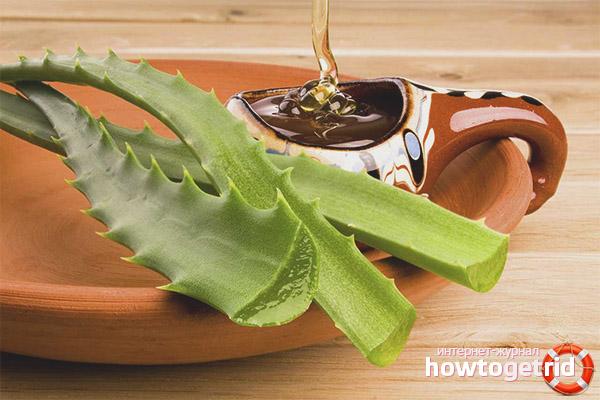 Мед и алоэ для лечения гастрита