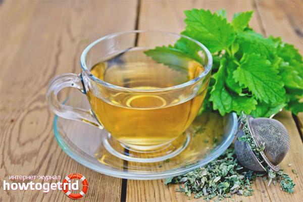 Особенности употребления чая с мелиссой