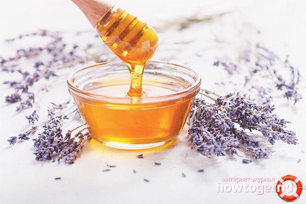 Полезные свойства лавандового меда