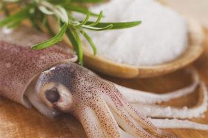 Польза и вред кальмаров