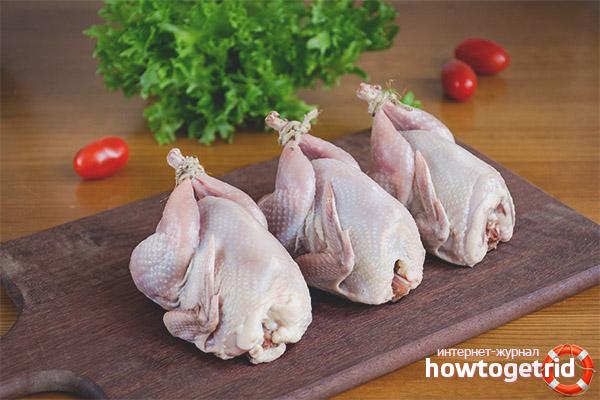 Польза и вред перепелиного мяса