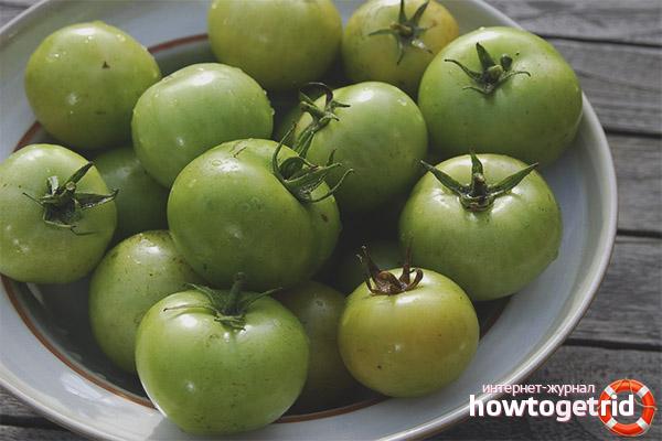 Польза и вред зеленых помидор