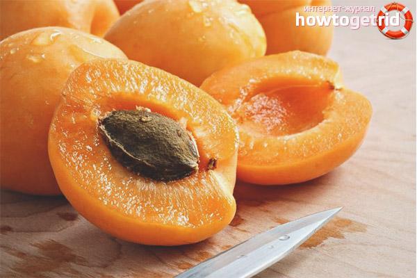 Применение абрикосовых косточек